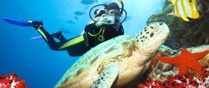 plongeur-guadeloupe-mer-caraibes